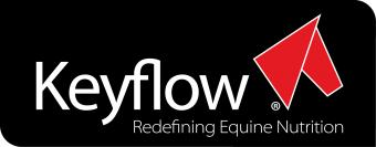 Logo for Keyflow (UK) Ltd.