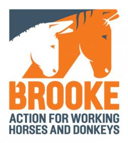 Logo for The Brooke