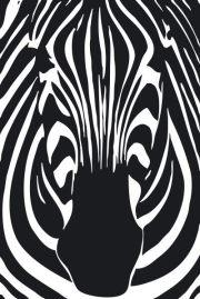 Logo for Zebra Products Ltd.